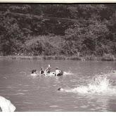 n008-012-1966-tabor-sikfokut.jpg
