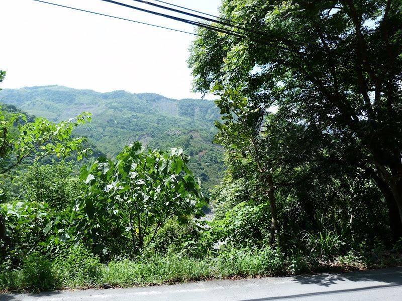 Tainan County. De Baolai à Meinong en scooter. J 10 - meinong%2B050.JPG