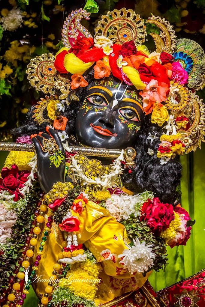 ISKCON Mayapur Deity Darshan 13 Jan 2017 (42)