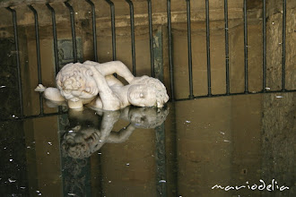 Photo: Angel Fight