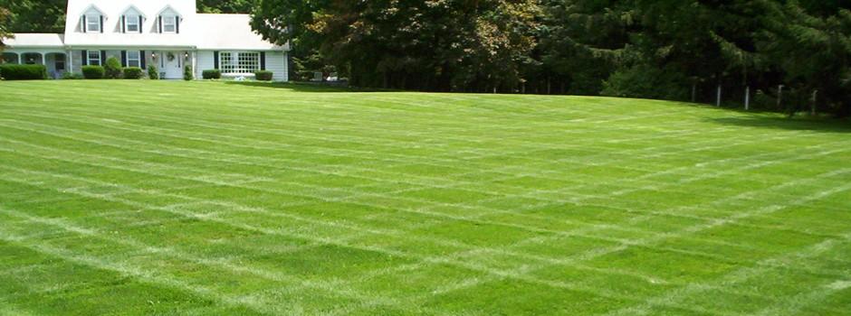 lawn1-slide1-940x350.jpg
