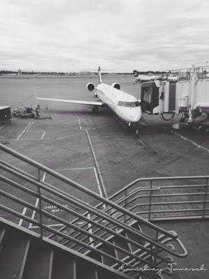 Courtney Tomesch Seattle Airport