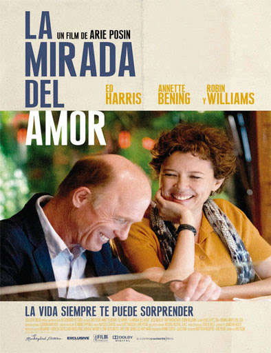 La mirada del amor (The Face of Love) (2013)
