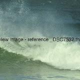 _DSC7532.thumb.jpg