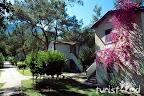 Фото 5 Kimeros Park Holiday Village ex. Suntopia Kimeros Resort