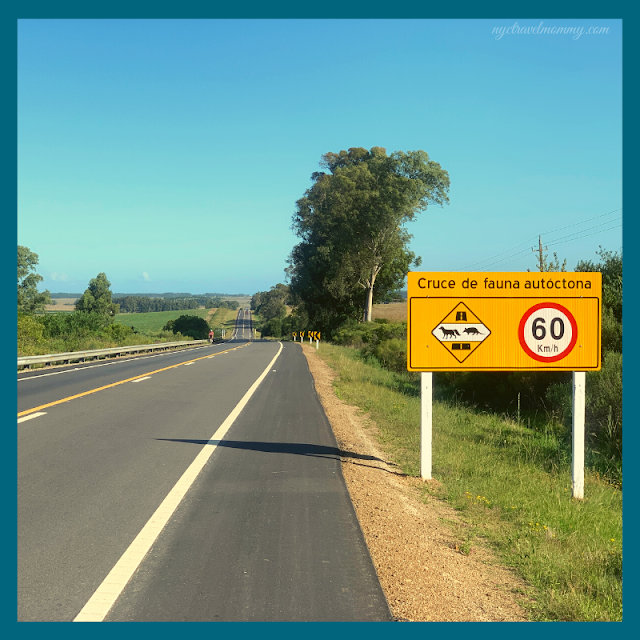 Travel to Uruguay with Kids - Road Trip