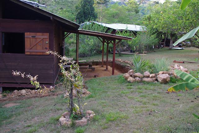 Les orchidées aux Carbets du Bord à Saül, 15 novembre 2012. Photo : J.-M. Gayman