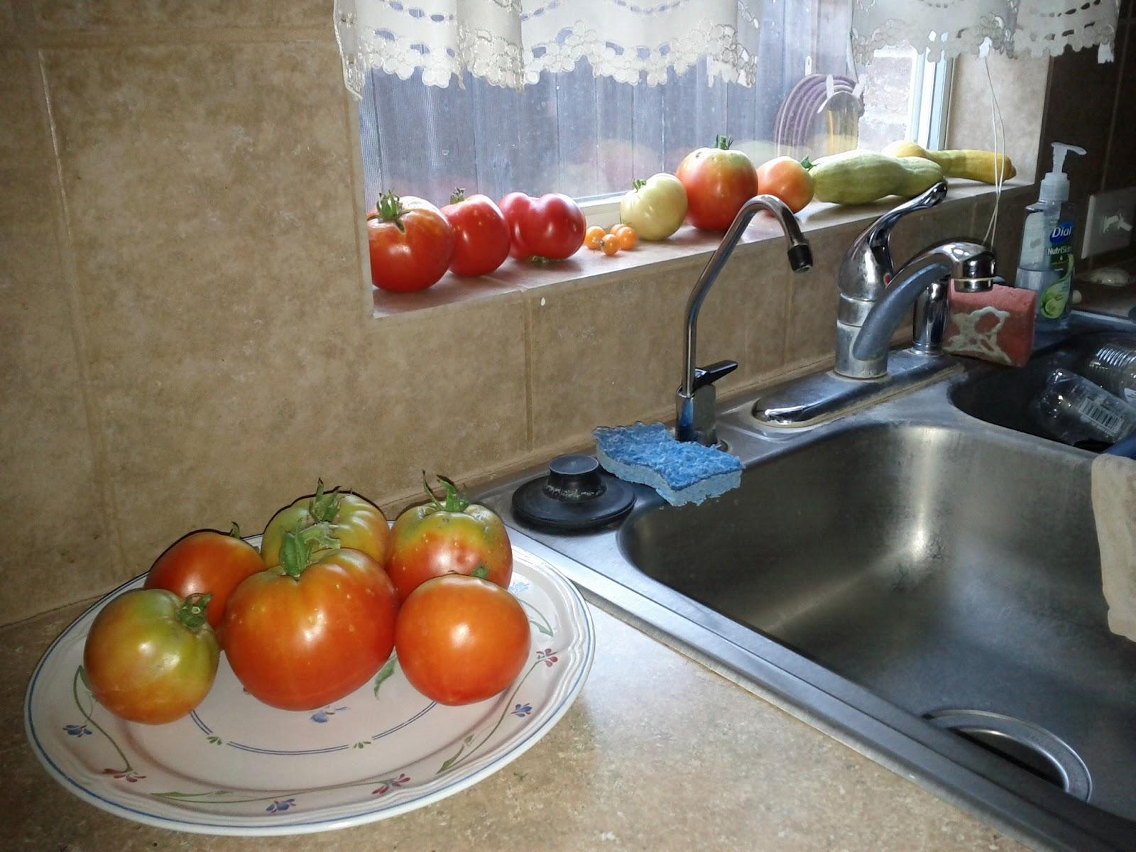 Gardening 2011 - IMG_20110612_180006.jpg