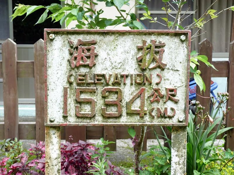 TAIWAN  Dans la region d ALISHAN - P1130873.JPG