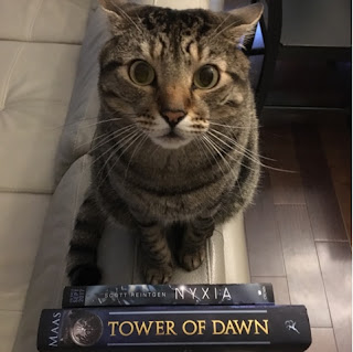 Pickles with Tower of Dawn and Nyxia.