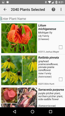 android Indiana Wildflowers Screenshot 1