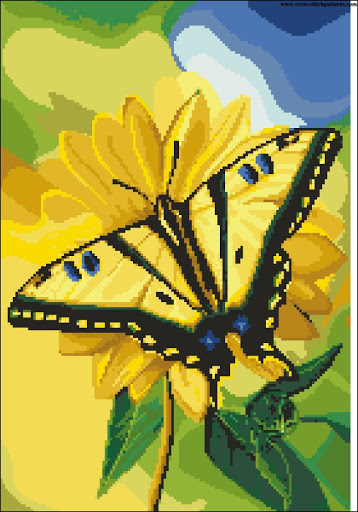 Yellow butterfly chart