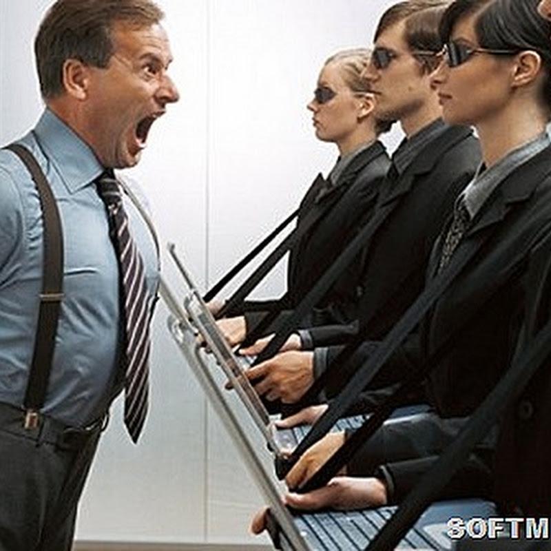 Типы начальников и как с ними лучше работать