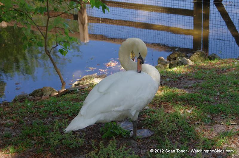 04-07-12 Homosassa Springs State Park - IMGP0031.JPG
