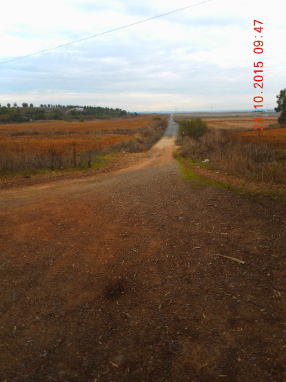 Rutas en bici. - Página 39 Guillena%2B24-10-15%2B001