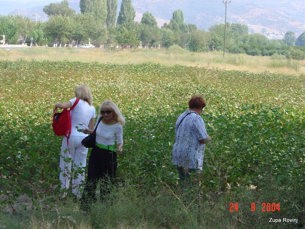 ANTALIA 2004. - 2 - DSC03976.JPG