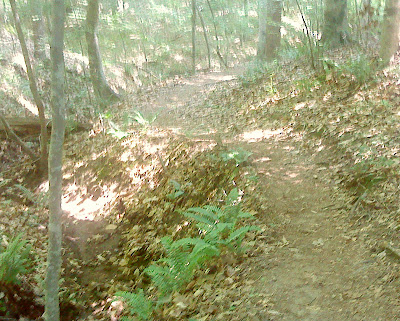 Falls Lake Trail Section 1 gets rolling