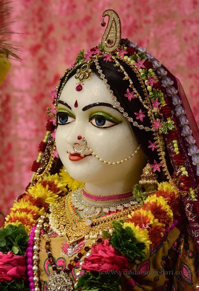 ISKCON GEV (Wada) Deity Darshan 23 Jan 2016 (3)