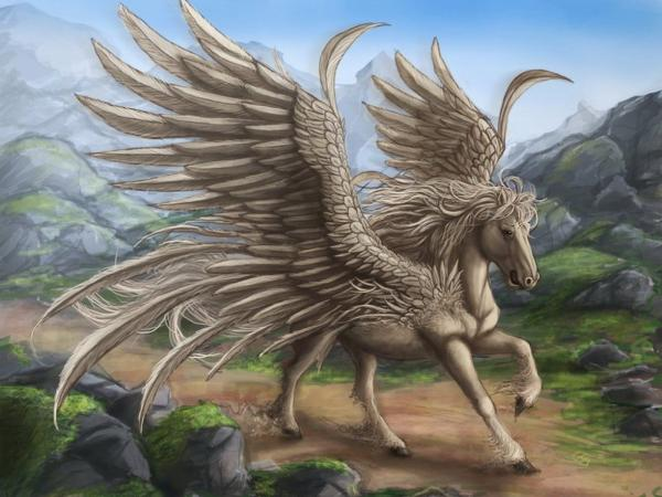 Winged Horse, Spirit Companion 4