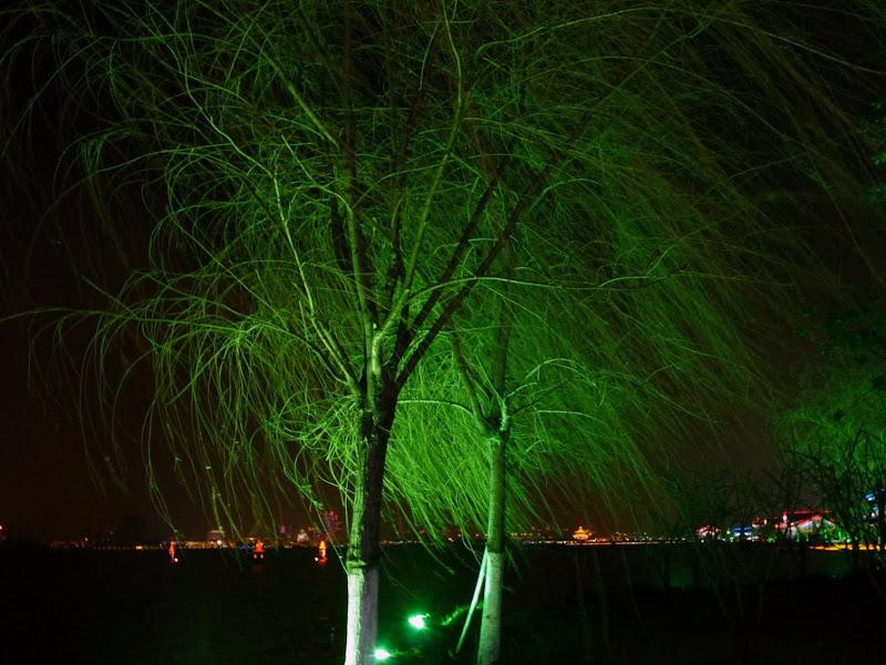 Suzhou.Un immense lac artificiel creusé il y a une dizaine d'années. Les arbres doivent être vert en hiver...