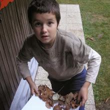 Jesenovanje MČ, Črni dol 2008 - Jesenovanje%2BM%25C4%258C%252C%2Boktober%2B2008%2B040.jpg