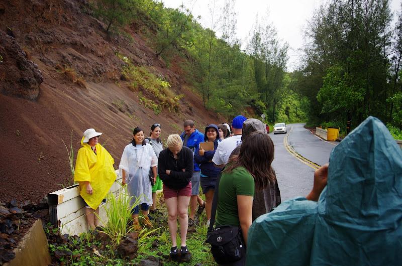 06-25-13 Annini Reef and Kauai North Shore - IMGP9298.JPG