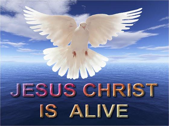 Uskrs besplatne pozadine za desktop 1280x960 slike čestitke blagdani golubica free download Happy Easter