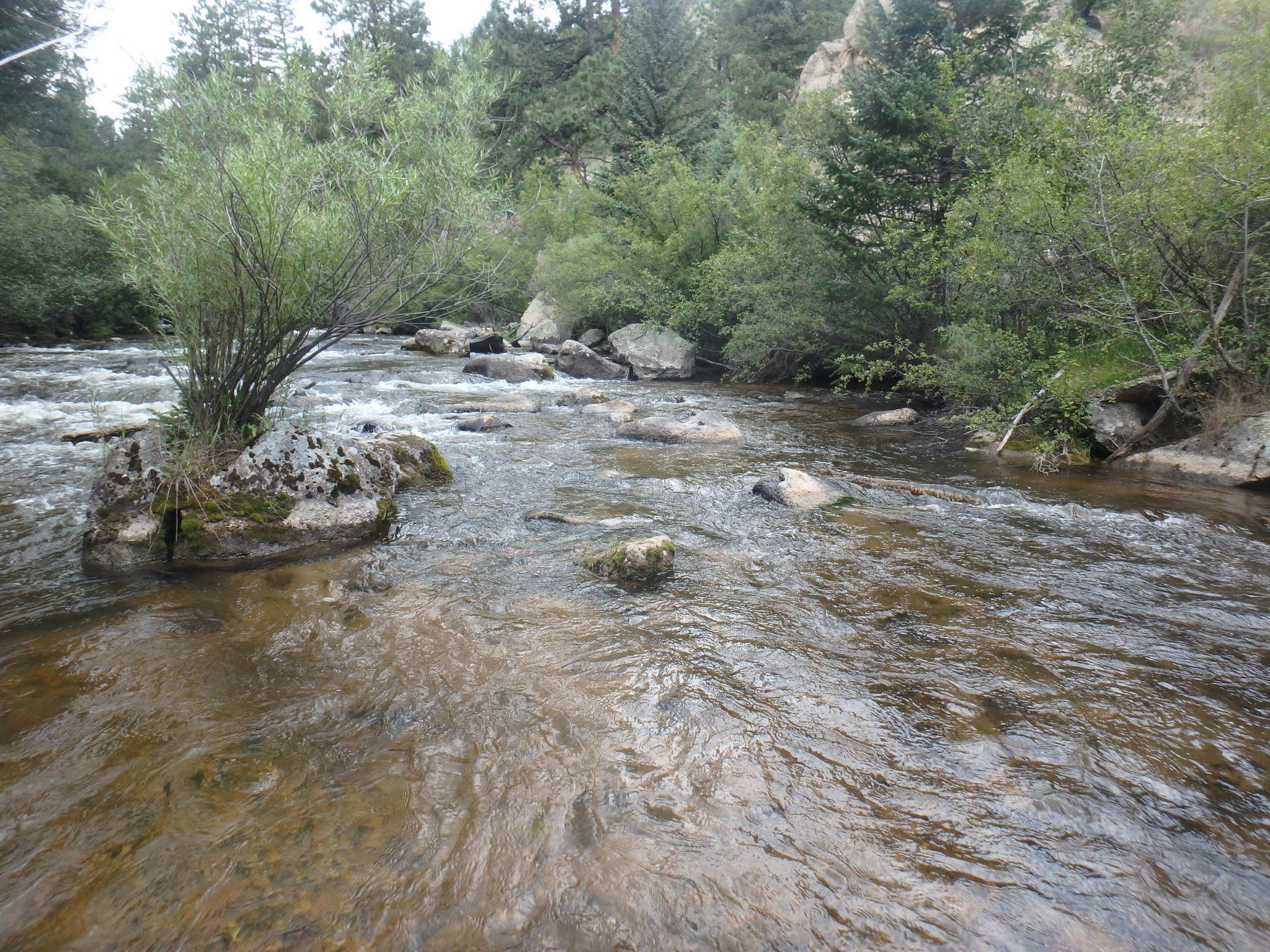 South boulder creek 08 14 2017 dave weller 39 s fly for Boulder creek fishing