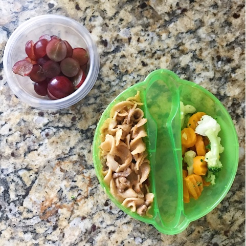 Thrifty Wife, Happy Life- 9 Healthy Toddler Meals to Pack for Daycare