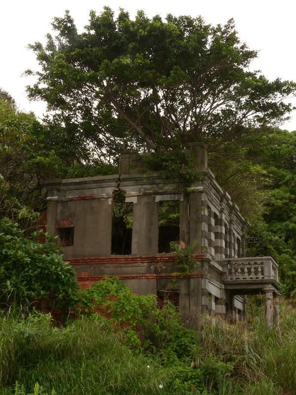 Ancienne maison construite au temps de la colonisation Japonaise. L arbre pousse a l interieur