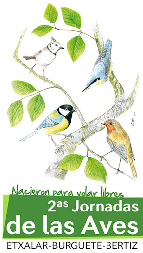 Cartel Segundas Jornadas de las Aves. Autor: