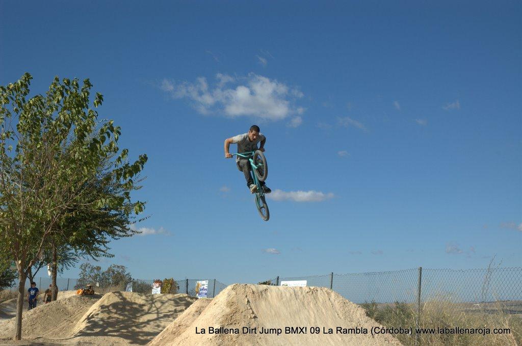 Ballena Dirt Jump BMX 2009 - BMX_09_0019.jpg