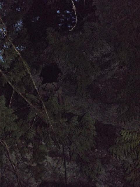 Camp Baldwin 2014 - DSCF3610.JPG