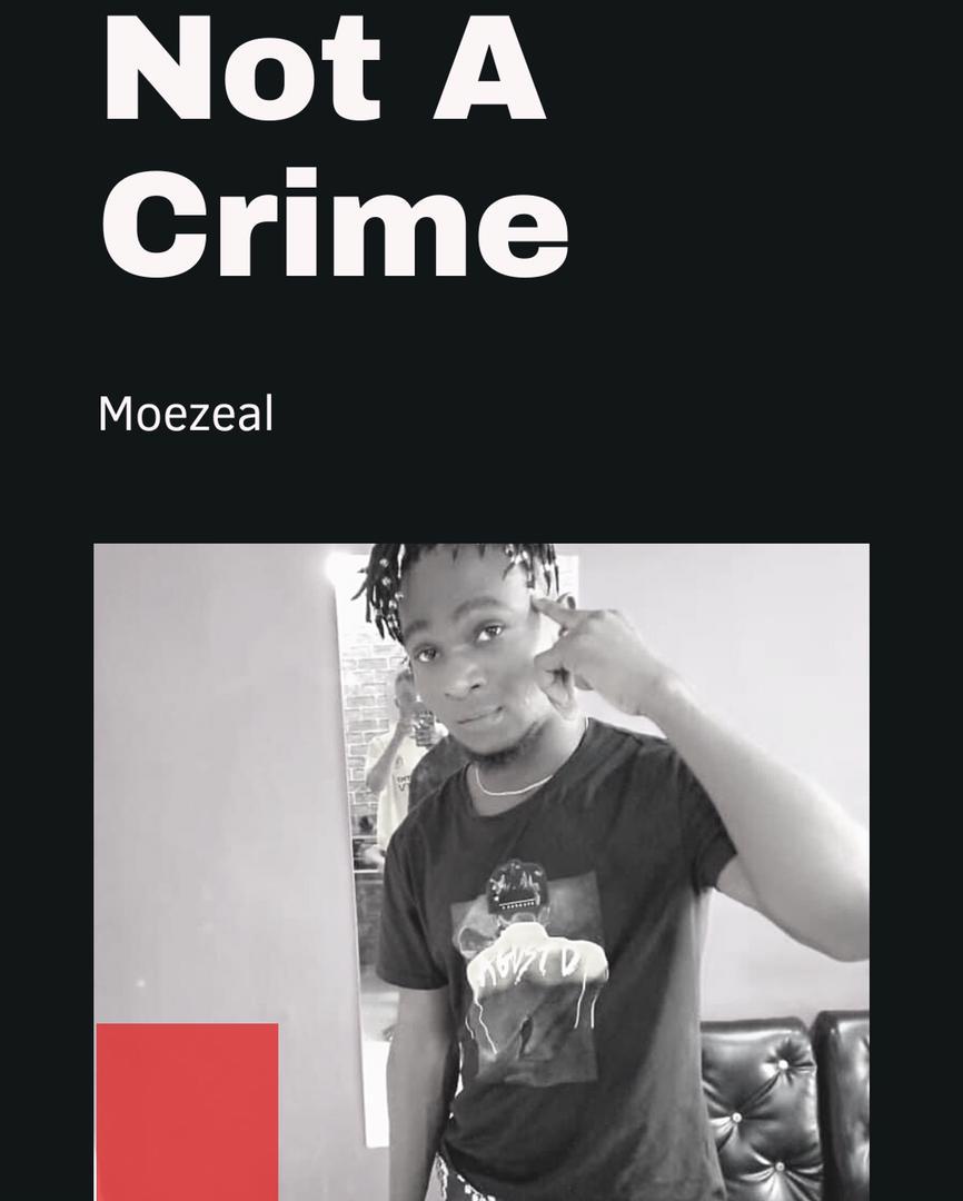 Moezeal - Not A Crime