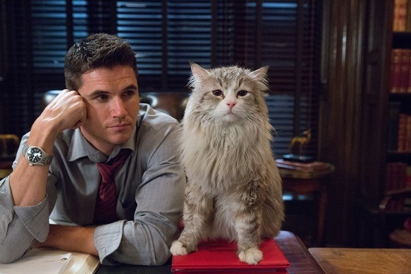 """M118 Robbie Amell and Mr. Fuzzypants tar in EuropaCorp's   """"NINE LIVES"""". Photo Credit: Takashi Seida © 2016 EuropaCorp"""