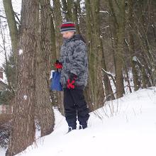 Krmení lesní zvěře 2010 - 2011