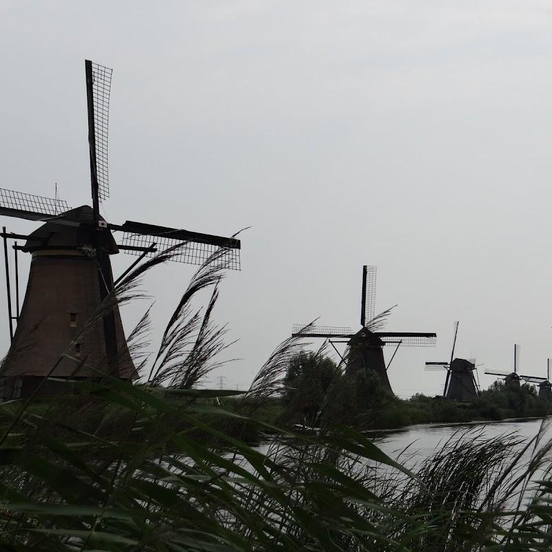 Day_6_Kinderdijk_29.JPG