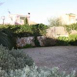 lavanda-garten_04-640.jpg