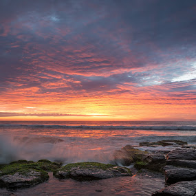 Shelly Beach Sunrise by Matthew Wood - Landscapes Sunsets & Sunrises ( clouds, waves, ocean, sunrise, beach, rocks, sun )