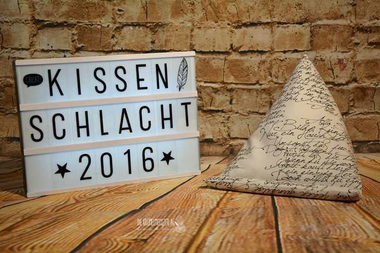 Buchkissen (01)