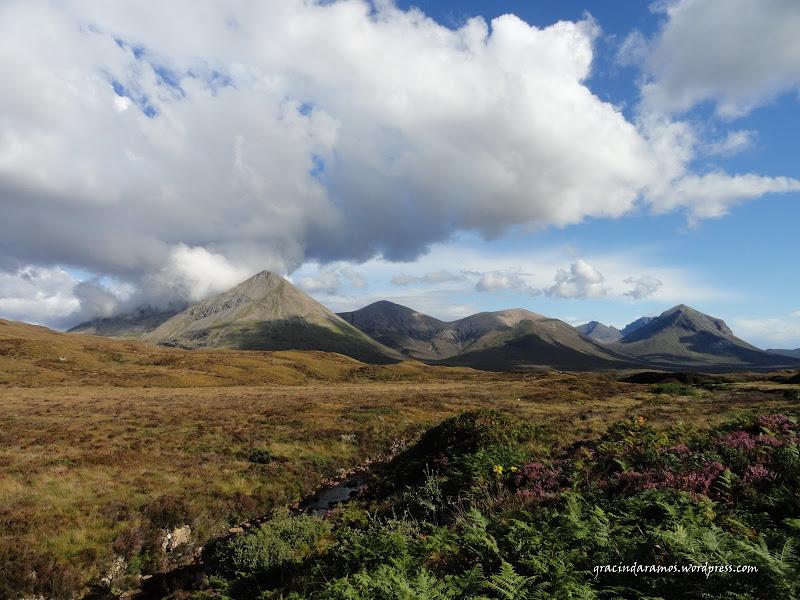 - Passeando até à Escócia! - Página 15 DSC04280