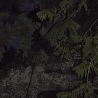 Camp Baldwin 2014 - DSCF3611.JPG