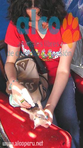 Asistencia Hualcara Cañete terremoto 2007 (1)