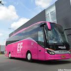 Pink Setra Besseling (4).jpg