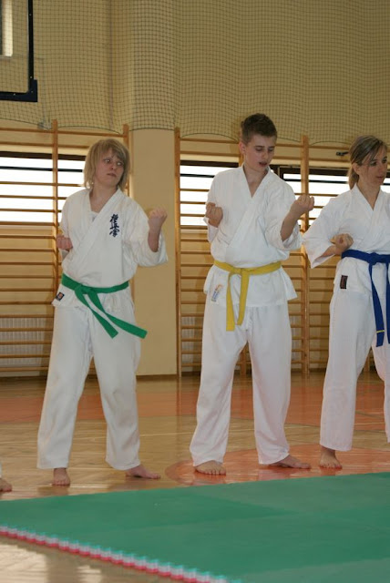 DO 2011 Pokaz karate - DSC00081_1.JPG