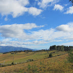 Blick vom Hostel Barnyard Backpackers - Te Anau