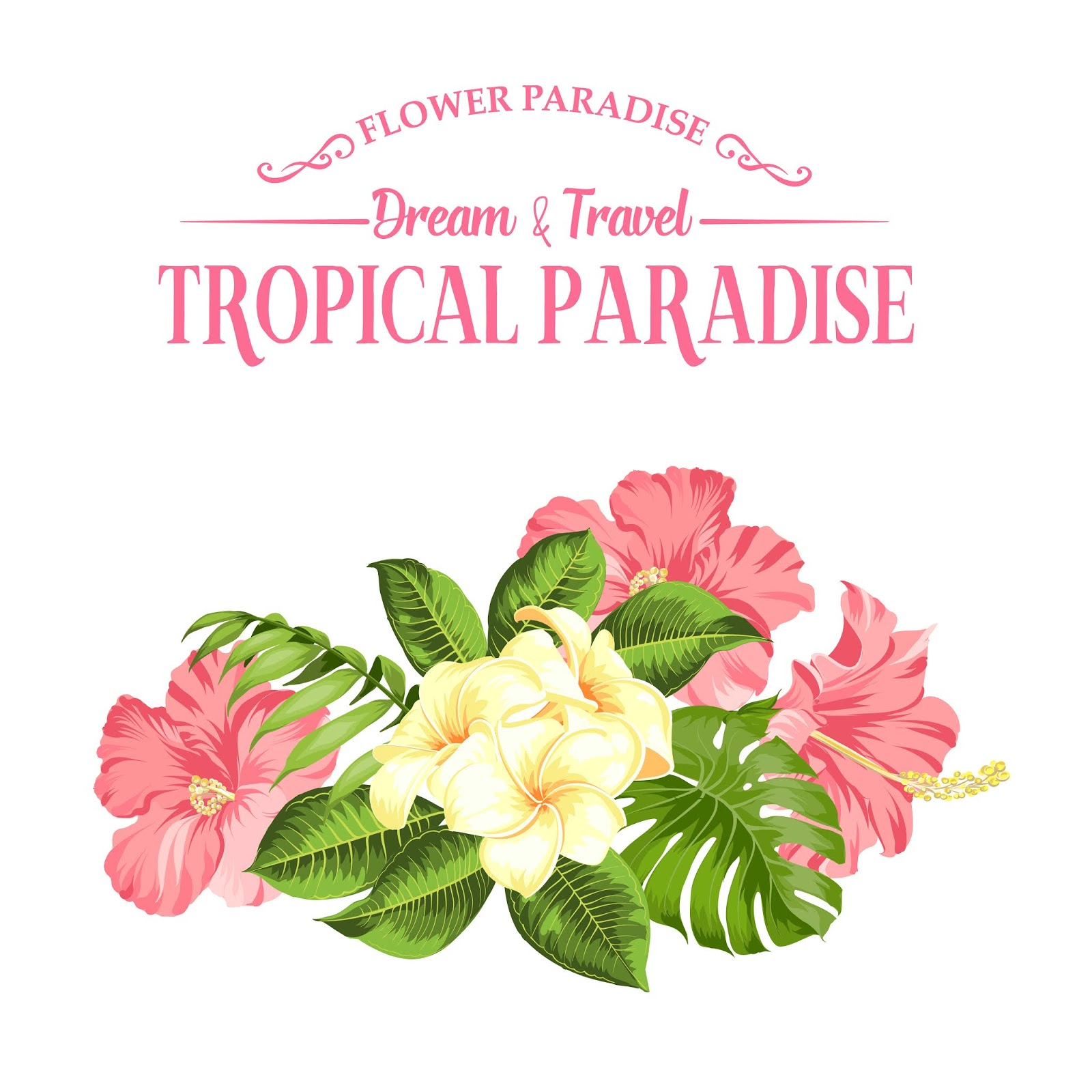 Tropical Flower White Free Download Vector CDR, AI, EPS and PNG Formats