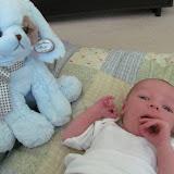 Meet Marshall! - IMG_0330.JPG