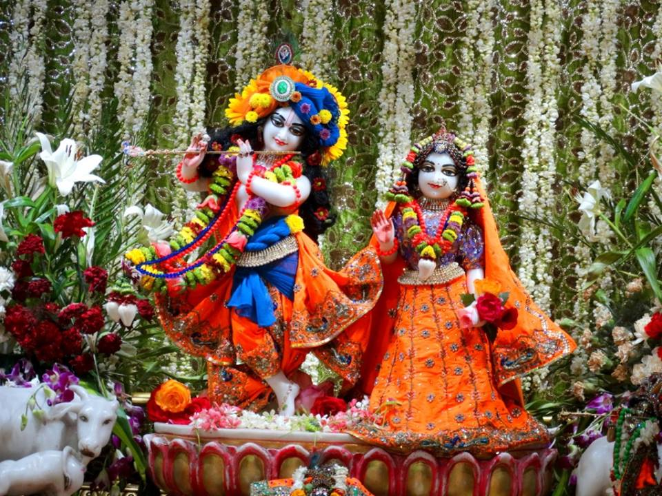 ISKCON Punjabi Bagh Deity Darshan 09 April 2016 (1)