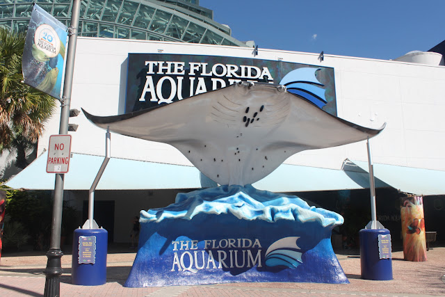 Visiting The Florida Aquarium This Is My South